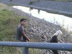 Bikerschwanz unter Brücke entsaftet ! - Reloaded