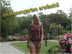 Im Rosengarten erwíscht